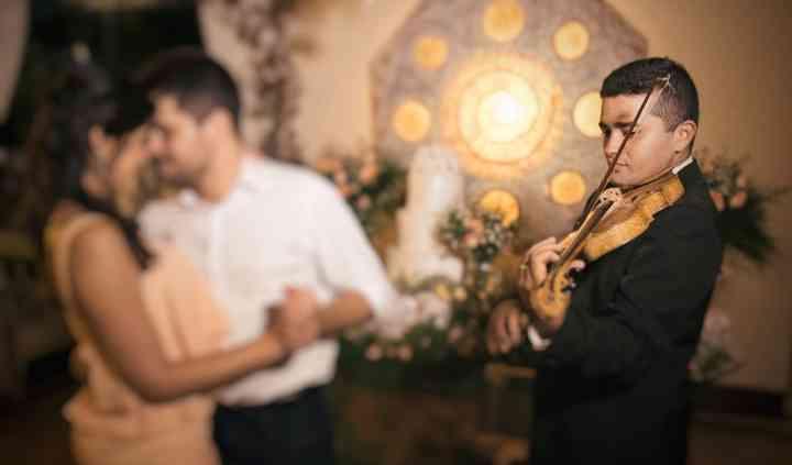 Laio Cosmo Violinista