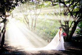 Aliram Campos Photo Design