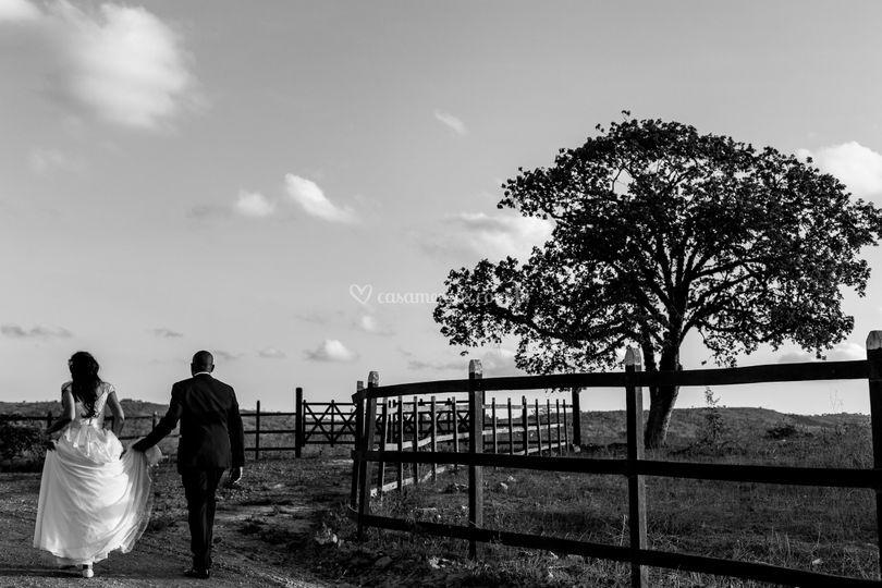 Rodrigo Gomez Photography