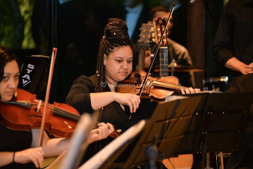 Quarteto de Violino