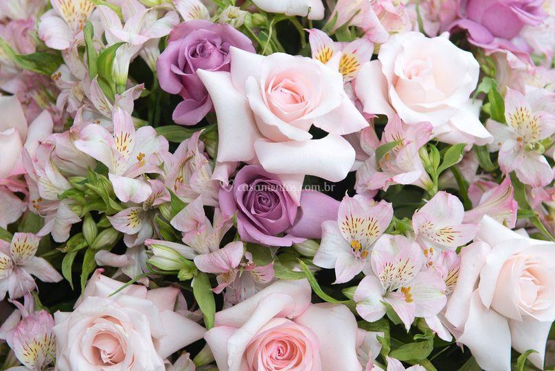 Flores de qualidade