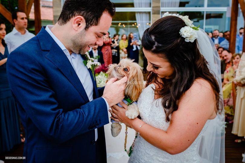Casamento Cachorrinho