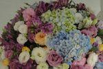 Lilás e azul
