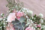 Buque com Suculentas e Rosas