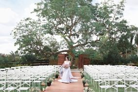 Intense Wedding