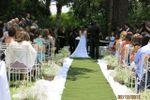 Casamento bosque do e Mosaico de Espa�o Mosaico