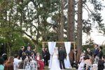 Bosque para casamentos de Espa�o Mosaico