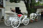 Carruagem dos noivos de Espa�o Mosaico