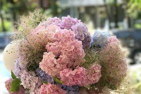 0500 Flores e Serviços