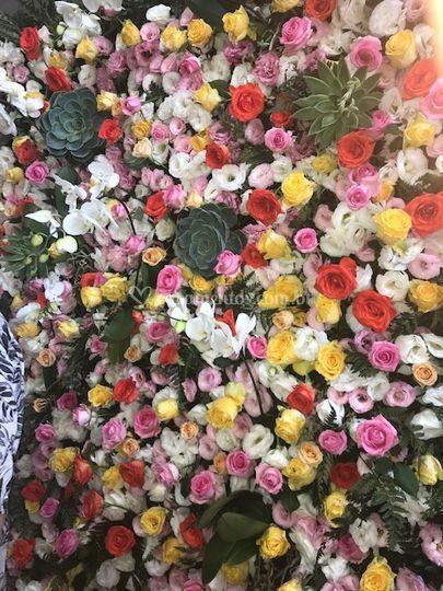 Parede de flores naturais