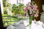 Jardins vistos das janelas de Mans�o da Ilha