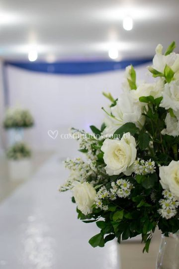 Flores belíssimas