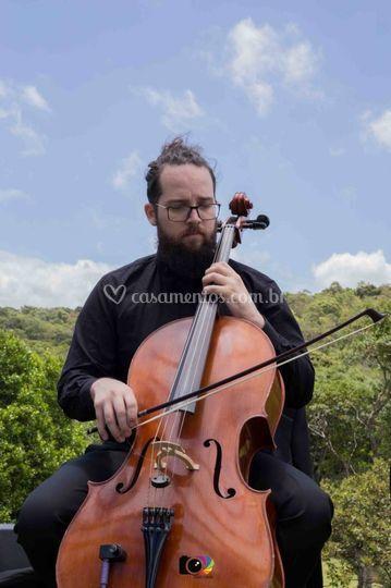 Violoncelo - Jere Sax & Banda