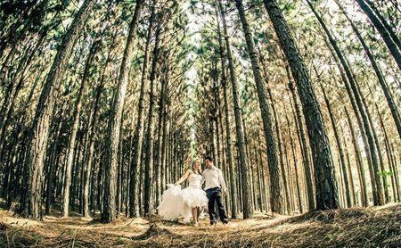 Ideias para um casamento ecol�gico
