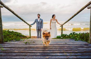 Pets no casamento: saiba como lidar com esses convidados especiais