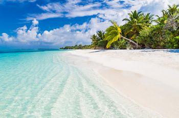 Lua de mel nas Maldivas: vivam essa beleza quase irreal