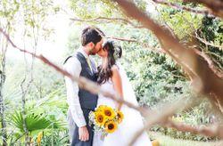 Guia sustent�vel: 7 dicas para evitar desperd�cios no seu casamento