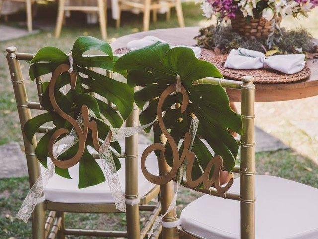 Tendência de décor com a planta costela-de-adão: ideias inspiradoras