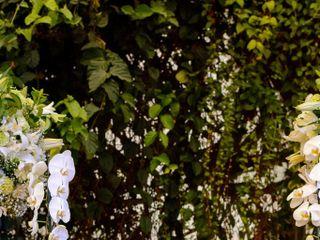 Flor Brasileira 4
