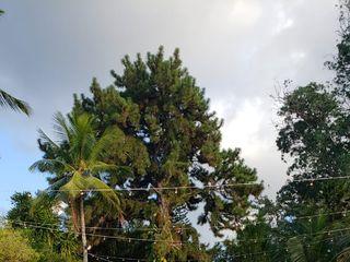 Quinta da Aldeia 4
