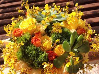 Viva Flores 1