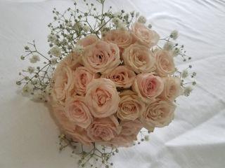 Treszerocinco Flores&ventos 1