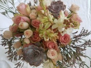 Treszerocinco Flores&ventos 2