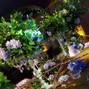 O casamento de Wanessa e Cerimonial Viva 15