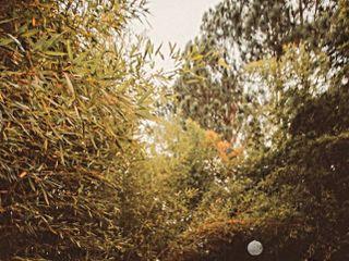 Espaço La Forêt 1