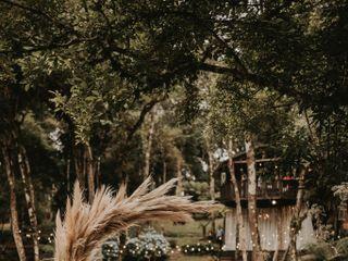 Casa Na Árvore 1