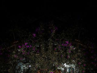 Espaço Luminattos 3