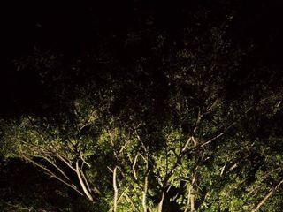 Bruna Roos Fotografia 1