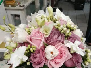 Nalva Flores 3