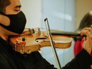 Laio Cosmo Violinista 2