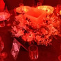 O casamento de Solange Martins Rosa e Rogerio Castro 25