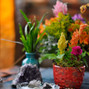 O casamento de Marina Lacôrte e Libélula Studio Floral 14