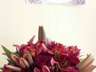 Acácia Flores Floricultura 2