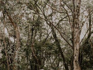 Celeiro Villa Mandacarú 2