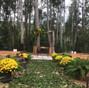 O casamento de Rayssa Olivão e Floresta Park 8