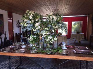 Patricia Curi Flores e Eventos 1