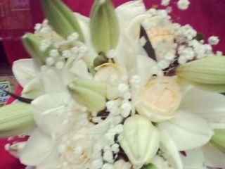 Do Salto Flores 4