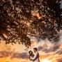 O casamento de Rodrigo Silva e Diogenes Rocha Fotografia 23