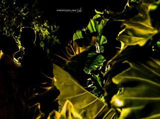 Anderson Lima Fotografia 5