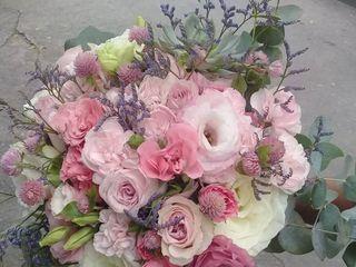 Mania Flores 5