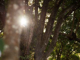 Lucas Souza Fotografia 5