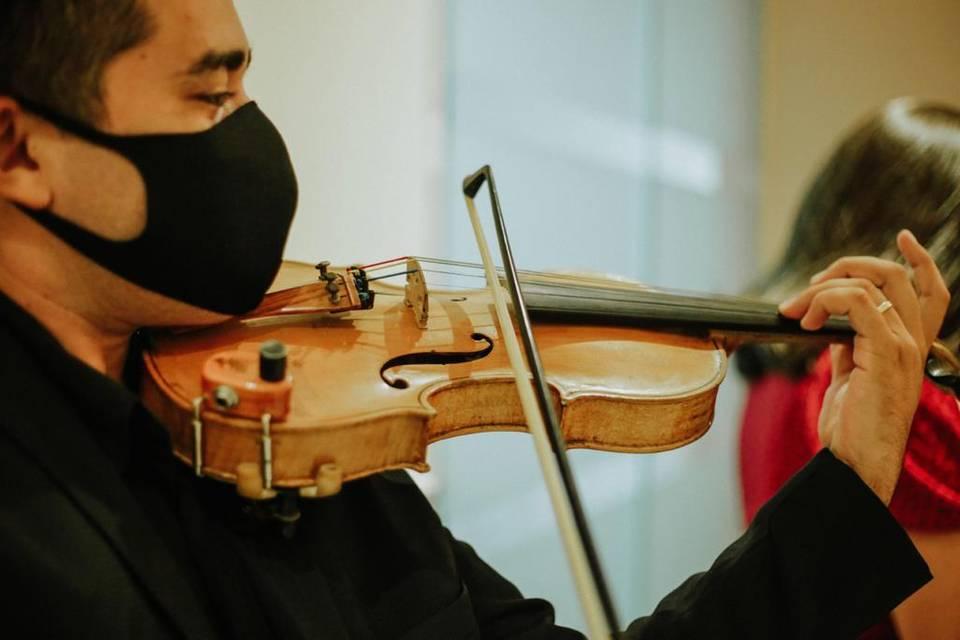 Laio Cosmo Violinista 11