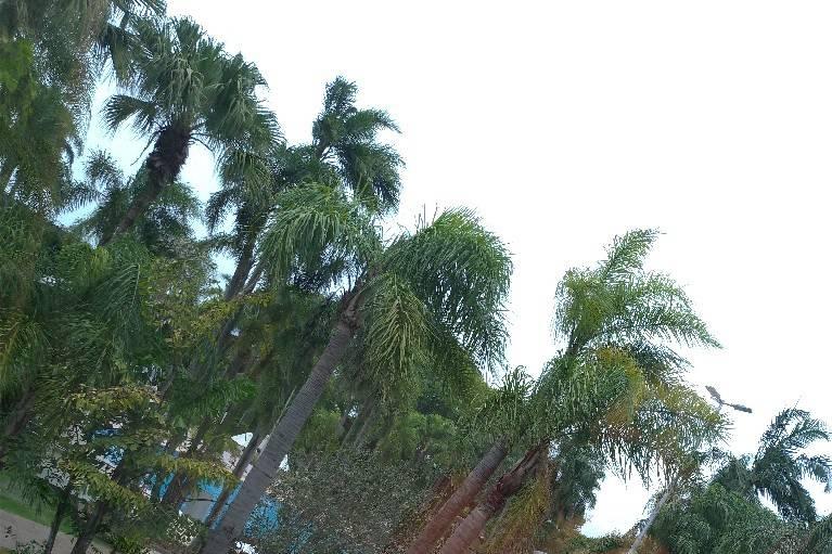 Vivaz Cataratas Hotel Resort & Aquaparque 1