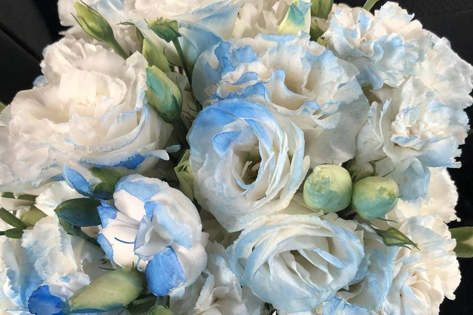 Floricultura Rosa de Sarom 5