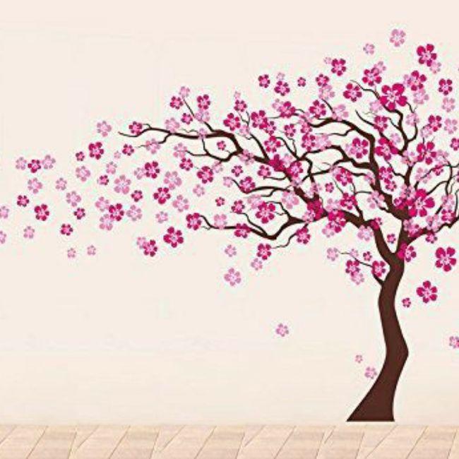 Imagens de flores de cerejeiras - 1