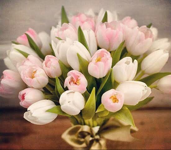 Buquê de tulipas: Like ou Dislike? 1